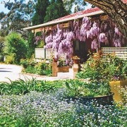 A photo of Greentrees Guest House accommodation - BookinDirect