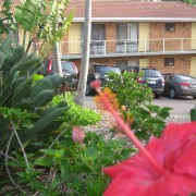 A photo of Ocean View Motor Inn accommodation - BookinDirect